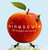 image_pomme_rouge__insecte_logo_serie_minuscule