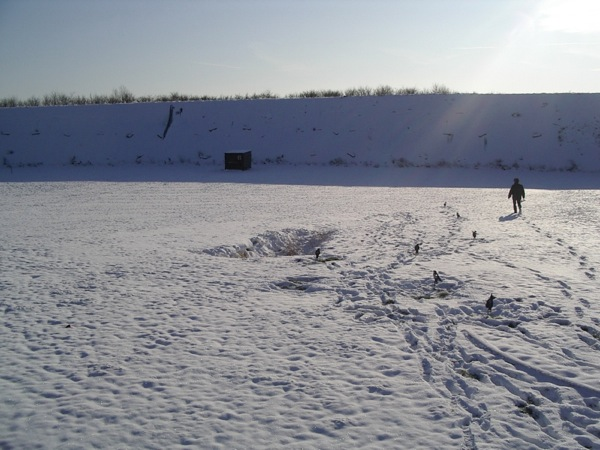 http://sd-1.archive-host.com/membres/images/107937001543640738/FT_sous_la_neige/entrai10.jpg