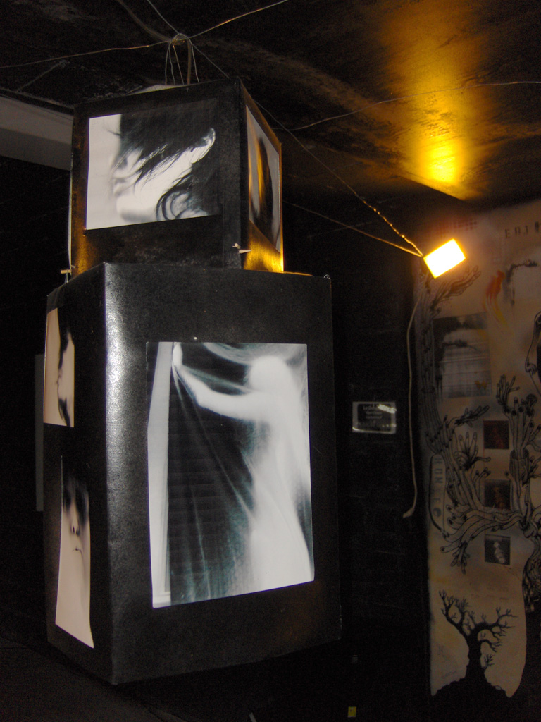 photo installation shadows 3/3# 1