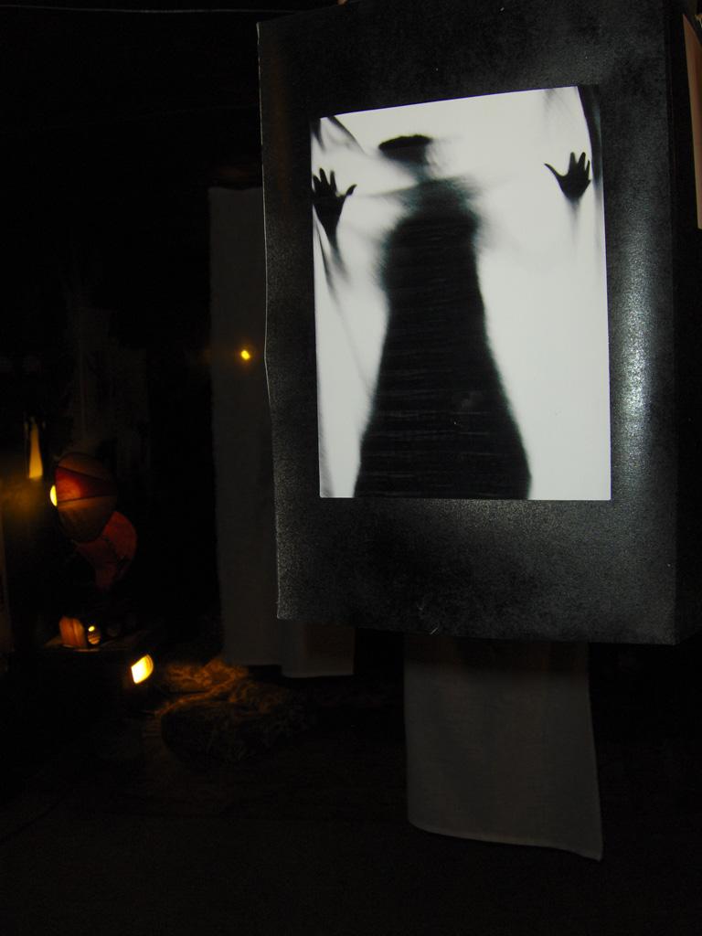 photo installation shadows 3/3#5