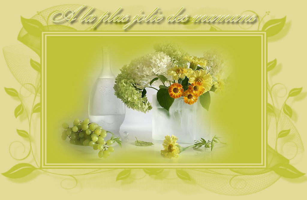 http://sd-1.archive-host.com/membres/images/213905367356762310/carte_simple/carte_simple4/a_la_plus_jolie.jpg