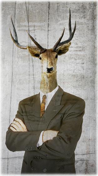 collage numérique portrait hybride