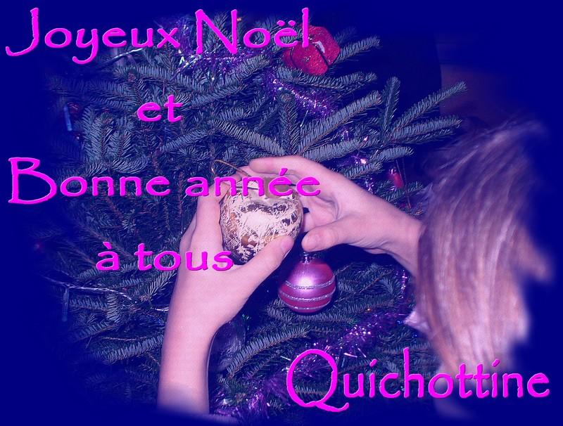 http://sd-1.archive-host.com/membres/images/65959505511811187/biblio/191223_Voeux_Quichottine.jpg