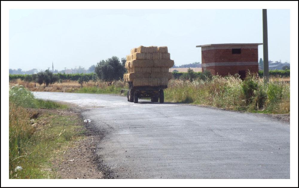 tracteur transportant de la paille
