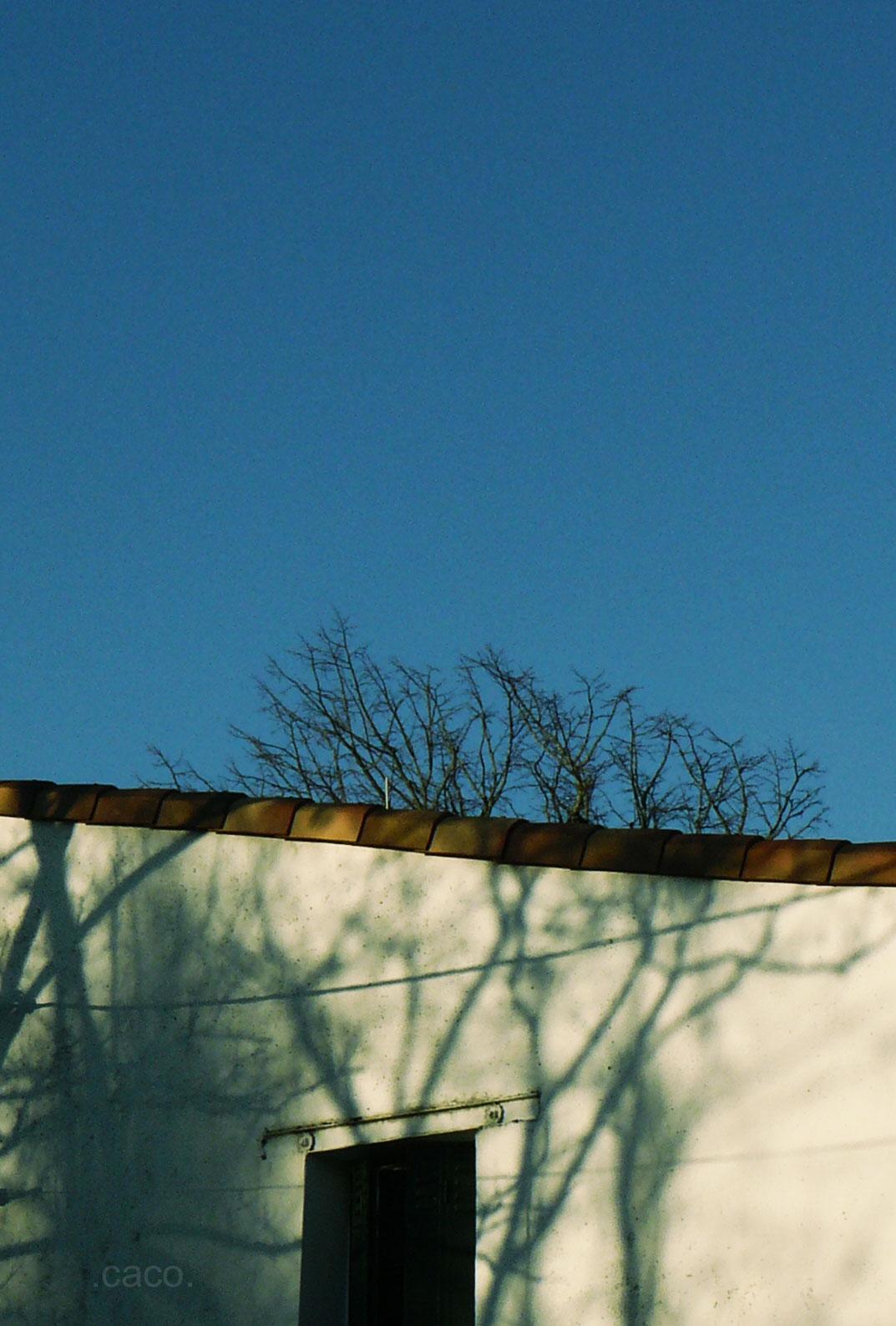 hiver12.jpg
