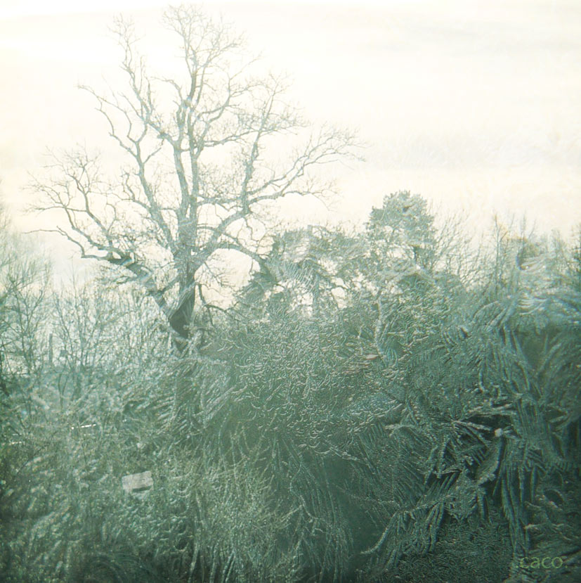 hiver4web.jpg