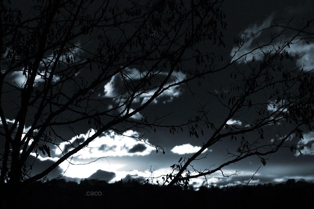 hiver8.jpg