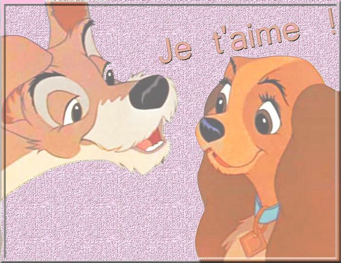 http://viens.over-blog.fr/article-paix-mon-coup-de-gueule-84596627.html