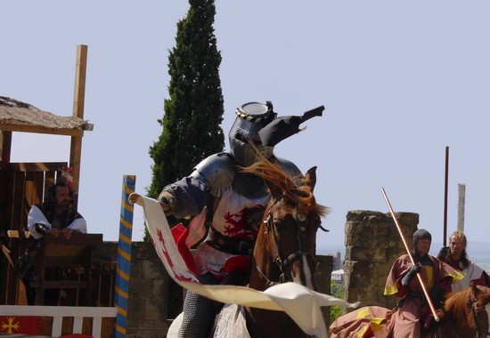 http://viens.over-blog.fr/article-spectacle-equestre-historique-cite-de-carcassonne-82248116.html