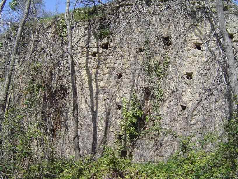 Les trous de boulin pour la construction des murs sont visibles sur toutes les parois