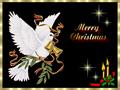 HAPPY FESTIVITIES END OF YEAR Noel23pm