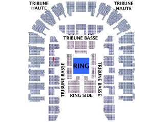 WWE RAW Montpellier 04/11/10 Arena_2