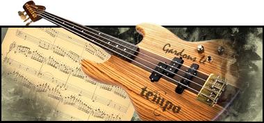 Galerie de Tempo Guitare