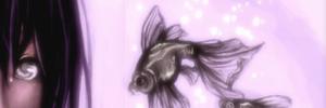 Shine Tokugawa (LB). ICONE