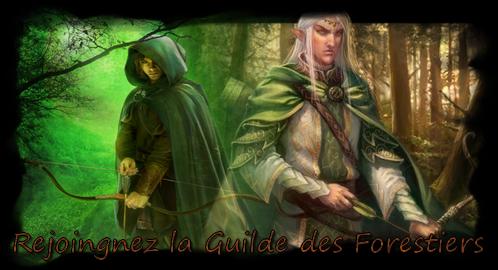 Les portes du Royaume du Gondor Bannierforestiert1