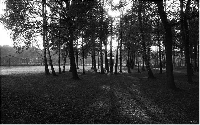 Une petite lumiere Pologne_1_78_copie