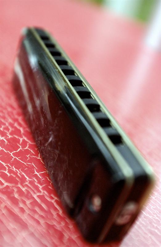 Photos harmonicas Brodur - Page 2 DSC_8215