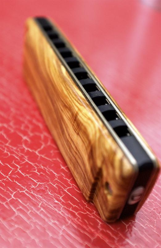 Photos harmonicas Brodur - Page 2 DSC_8216