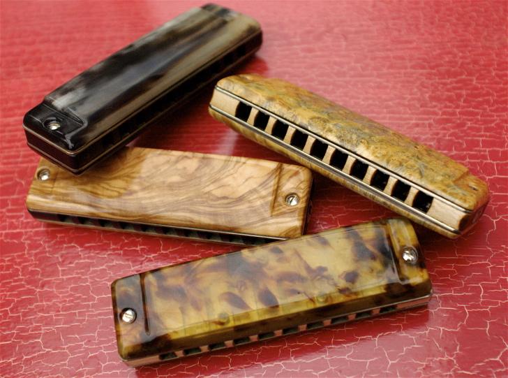 Photos harmonicas Brodur - Page 2 DSC_8224