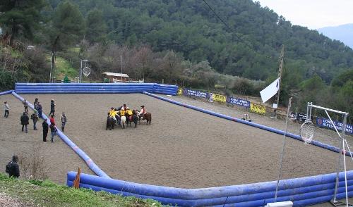 Terrain de horse-ball TerrainHB_500