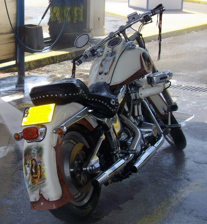 Combien de Softail sur le forum Passion-Harley - Page 2 IMGP0908-1