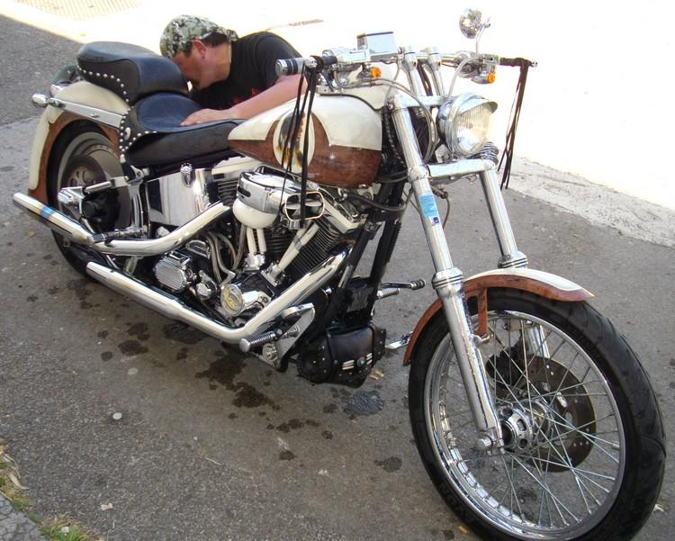 Combien de Softail sur le forum Passion-Harley - Page 2 IMGP0911-1